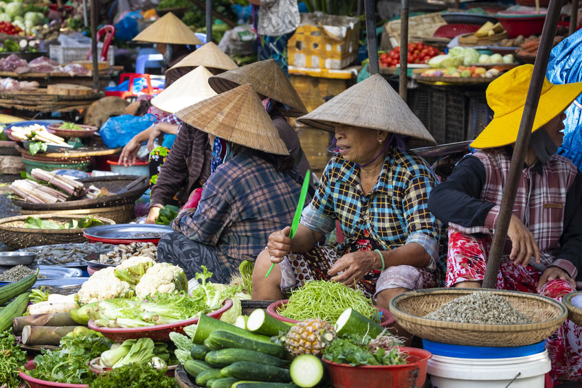Exploring the Markets of Vietnam